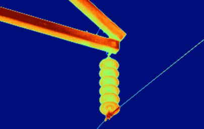 Thermal image of an electrical power line pole with 4X lens